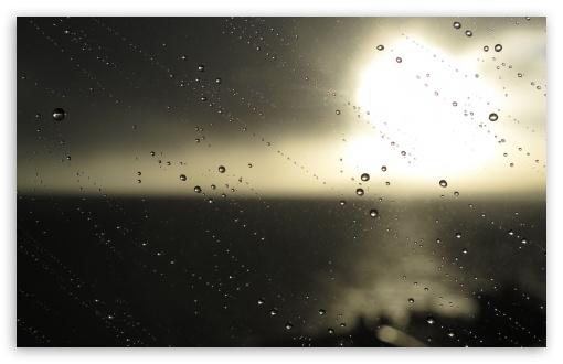 sun_after_storm-t2