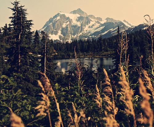 lake_trees_and_mountain_range