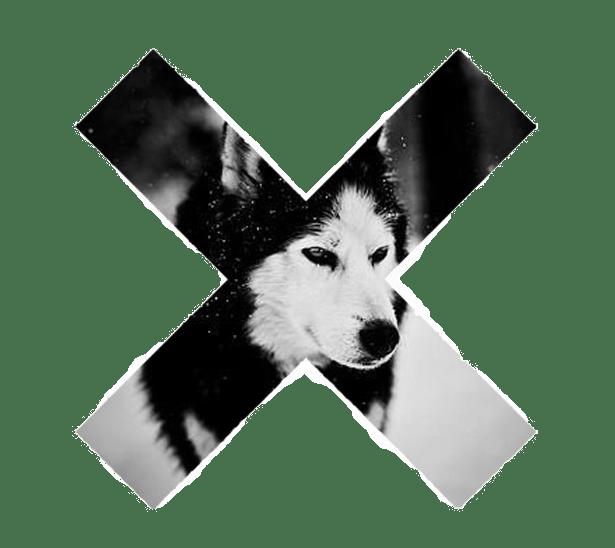tumblr_static_wolflush11