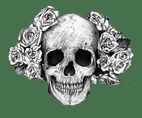 tumblr_static_tumblr_static_tumblr_static_skull