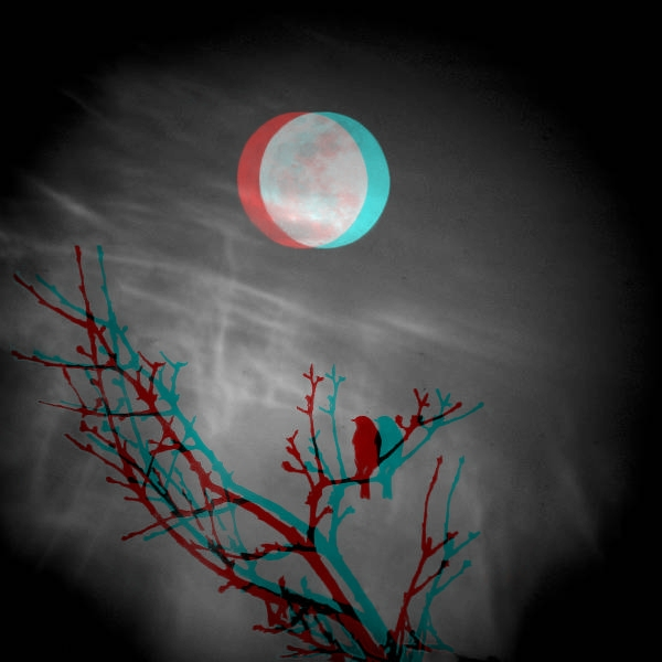 moon_sparrow_3d__mpo__by_mildor666-d4xog5c