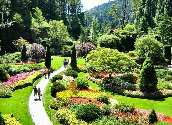 Botanical Gardens Nanabread' Head