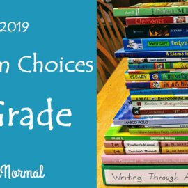 3rd Grade Curriculum Choices InsideOurNormal