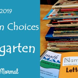 Kindergarten Curriculum InsideOurNormal