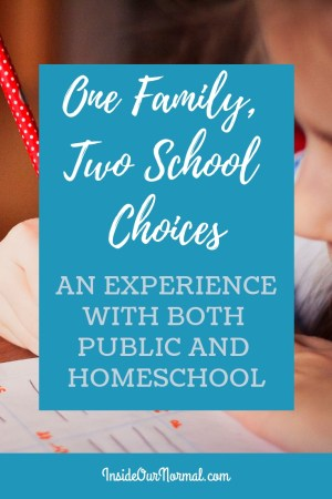 One Family Two School Choices Experience with Public School and Homeschool