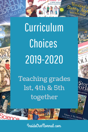 Curriculum Choices for the 2019-2020 year InsideOurNormal.com