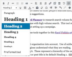 blog post - content editor - format text