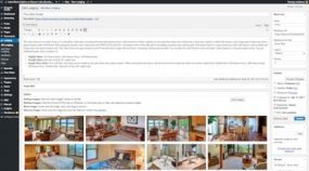 Lake Shore Cabins website Rooms custom post type editor