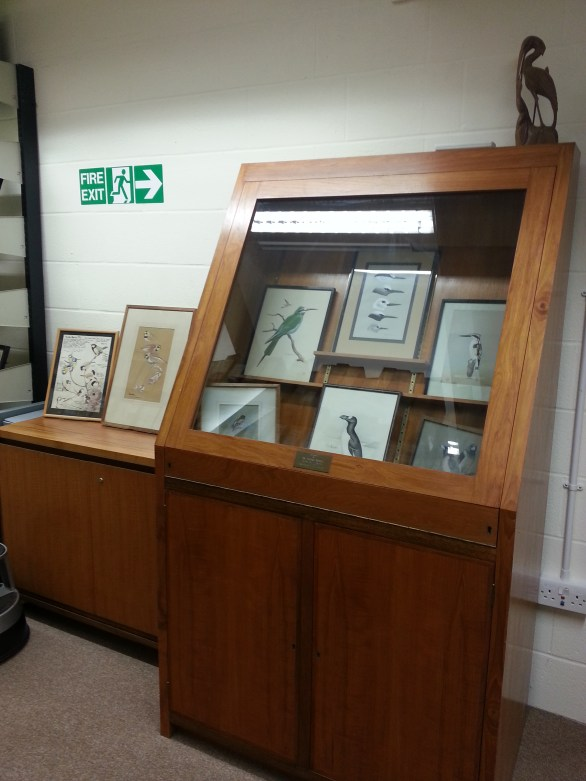 Alexander Library of Ornithology: Display cabinet inside library