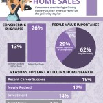 "Luxury Home Sales ""Infographic"" as Reported by Realtor.org"