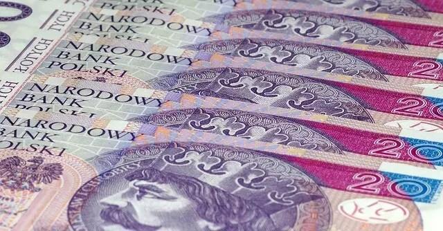 История польской валюты - злотого