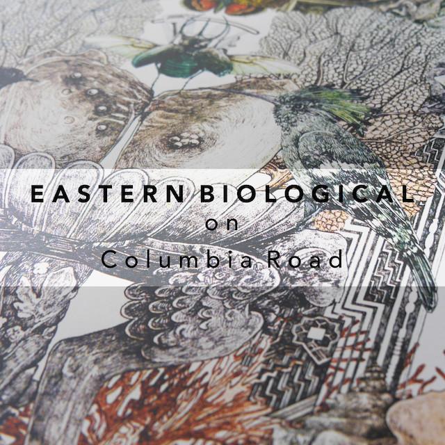 Eastern Biological London pop-up retail innovation