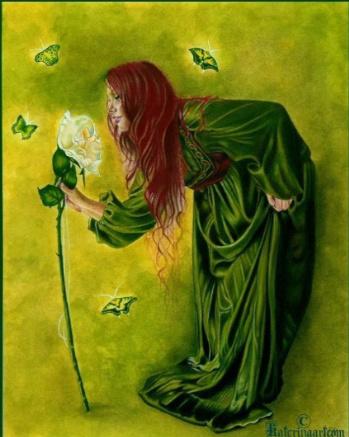 irish white rose
