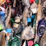 Major retailers pledge sustainable initiatives at National Plastics Summit