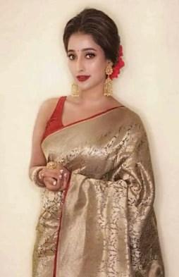 Sayantika Banarjee Saree Image