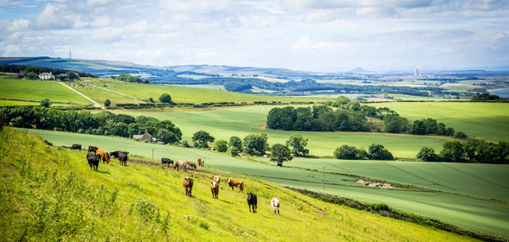east_lothian_farmland