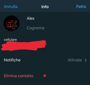 Come eliminare un contatto dalla rubrica di Telegram su iOS