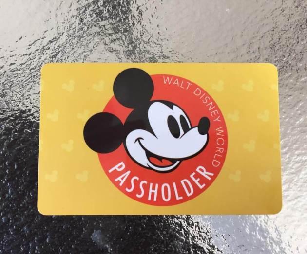 Walt Disney World Annual Pass