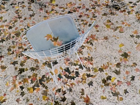 the lone chair web