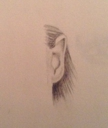 Portraits Part 4 Drawing Ears Inside The Outline
