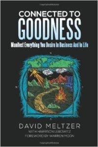 Connected to Goodness by David Meltzer