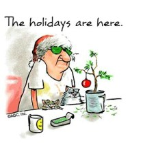 holidays-are-here