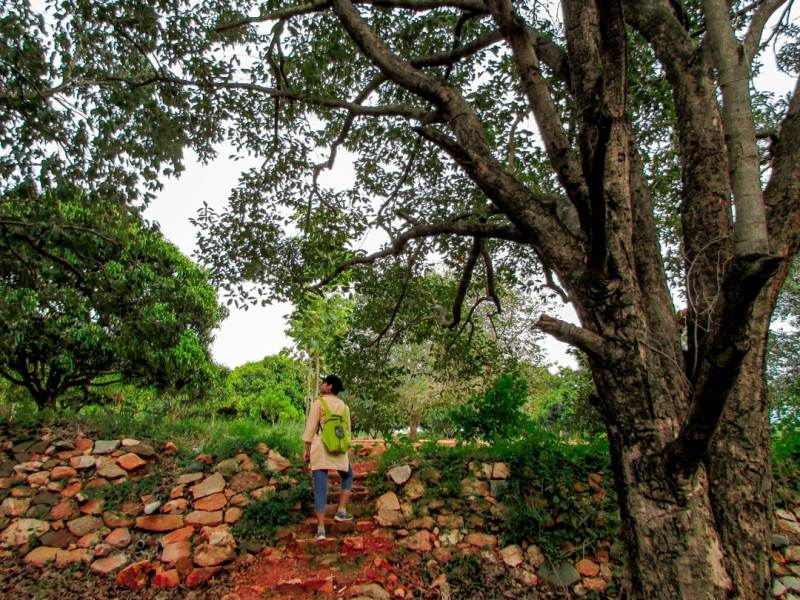 Goodbye Bangalore, For I Am Moving To My Village