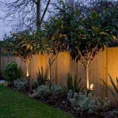 41 DIY Backyard Privacy Fence Design Ideas on A Budget
