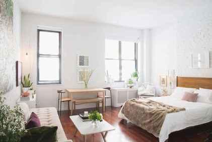 60 Clever Studio Apartment Decorating ideas