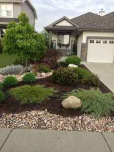 15 Low Maintenance Front Yard Landscaping Ideas