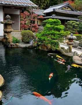 17 Unique Backyard Garden Water Feature Landscaping Ideas