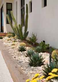 21 Low Maintenance Front Yard Landscaping Ideas