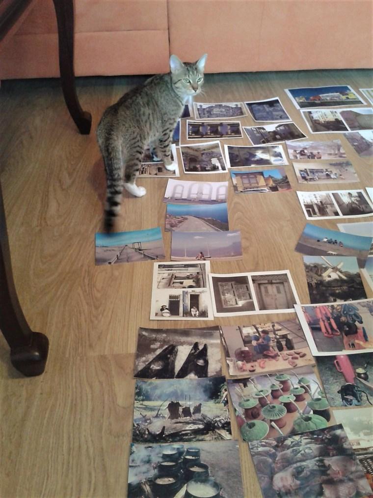 Tycjusz.cat .exhibition 1