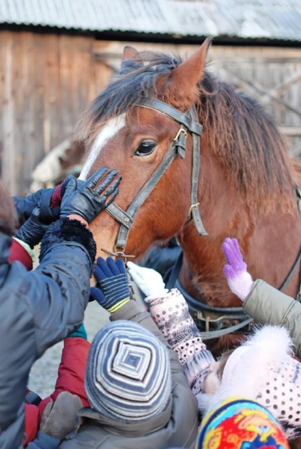 vaikai glosto arkli 2