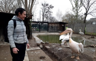 the wildlife rescue centre stara zagora