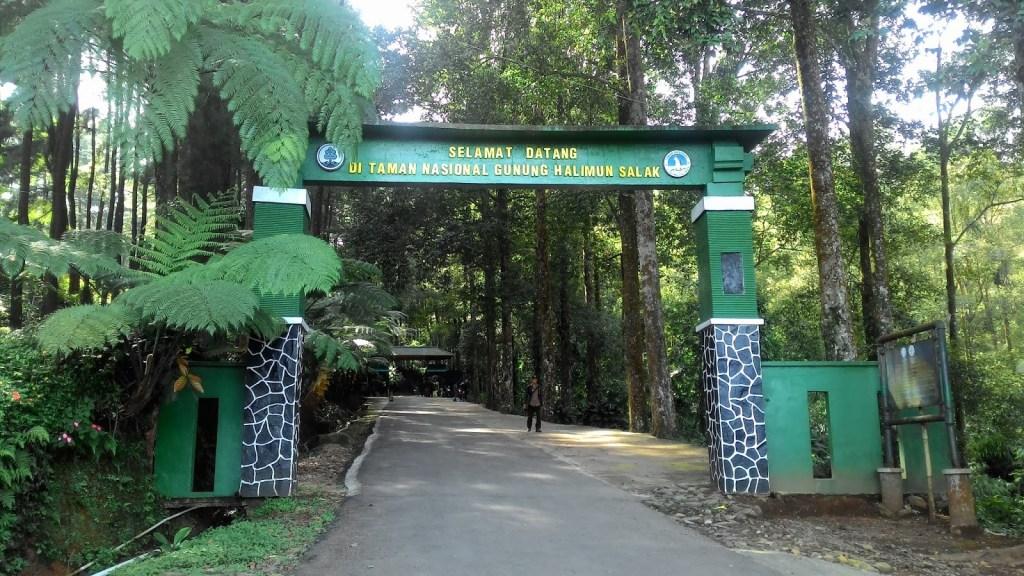 outing karyawan di Bogor