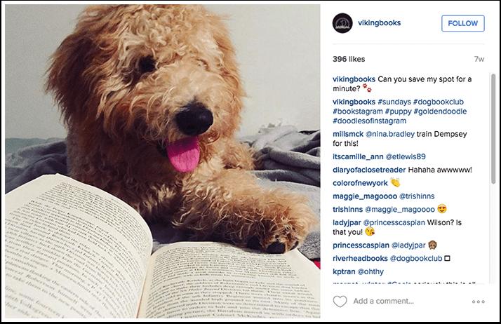 Viking Books Instagram