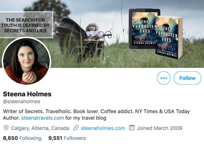 Steena Holmes Twitter Header