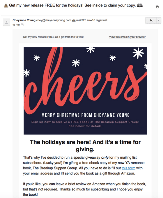 Holiday Newsletter Example #2