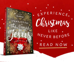 Holiday Bookbub Ad 5