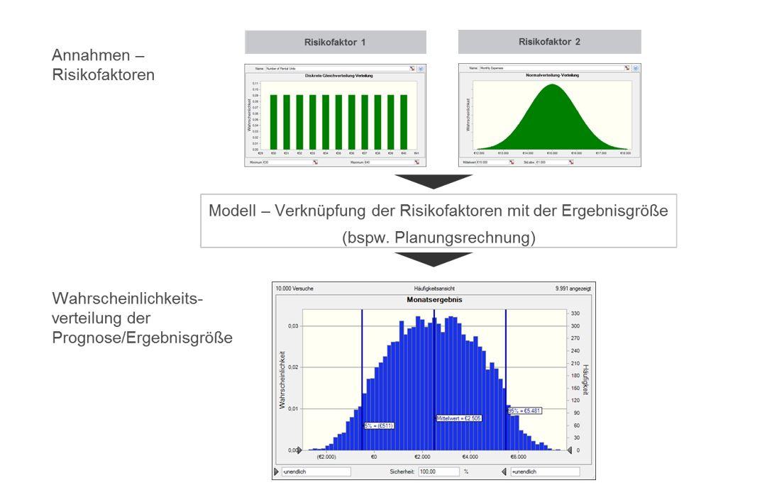 Abb. 2: Crystal Ball® Modell – schematische Darstellung.