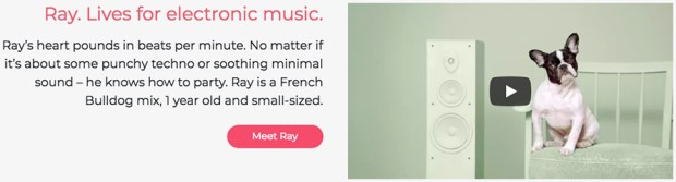 adoptify-ray