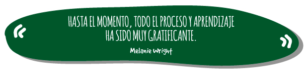 Quote-001-Cerveza-MUt-Lager