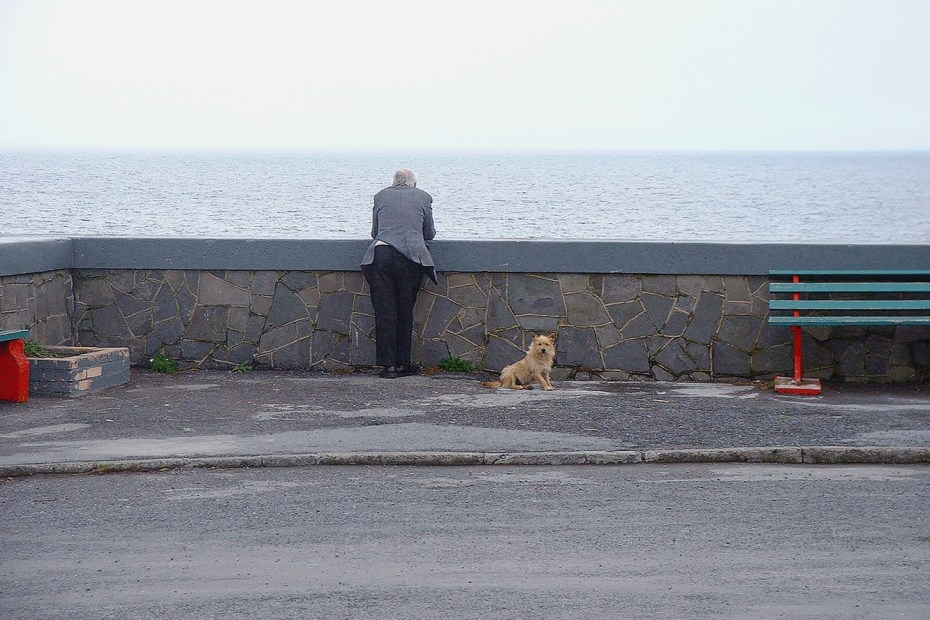 Man leaning on stone wall looking at Atlantic Ocean in the background with his small orange-yellow colored dog to his right on an overcast grey on the West Coast of Ireland.