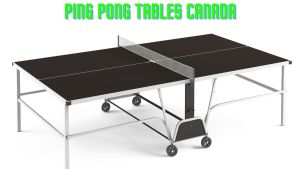 Read more about the article Best Ping Pong Tables Canada in 2021