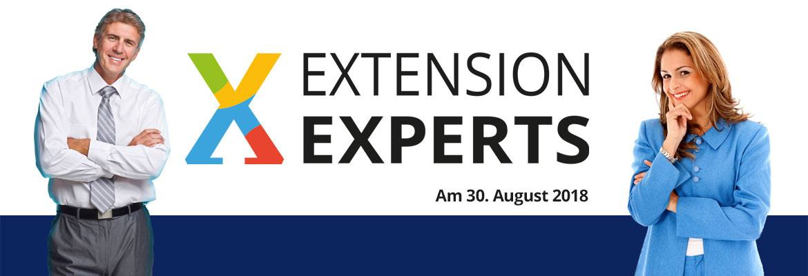 Blog Extension Experts