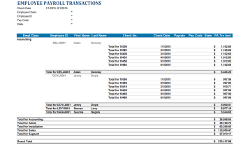 Gp010 Professional Payroll Transactions By Class