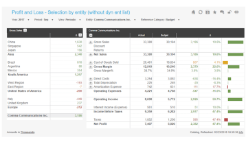 Profit Loss Selection By Entity Example Dashboard