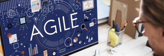 Agile financial organization