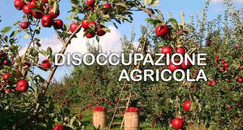 Che cos'è la disoccupazione agricola?